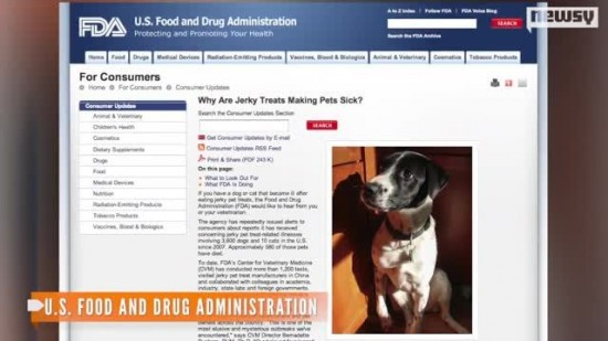5384227-Dogs-Dying-from-Jerky-Treats-FDA-Unsure-Why
